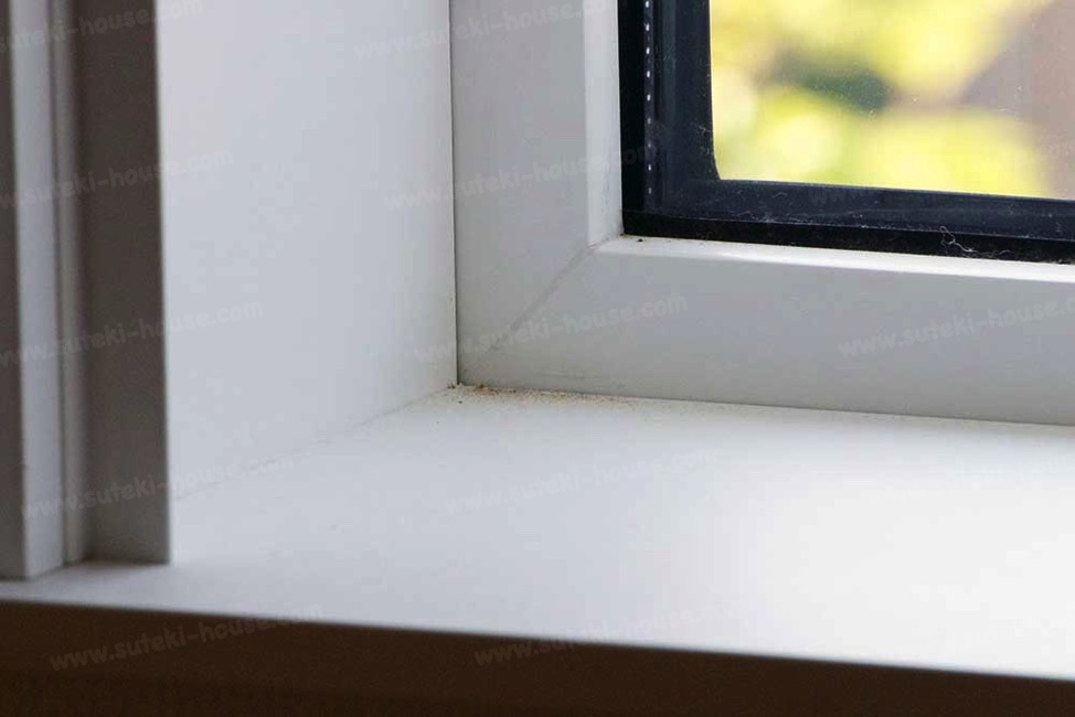 吹き抜け窓に発生したカビ